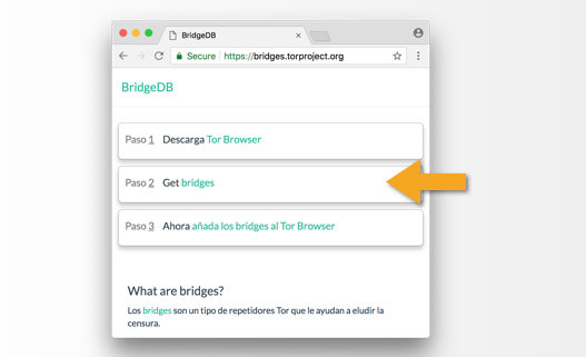 Cómo usar Tor Browser en tu computadora